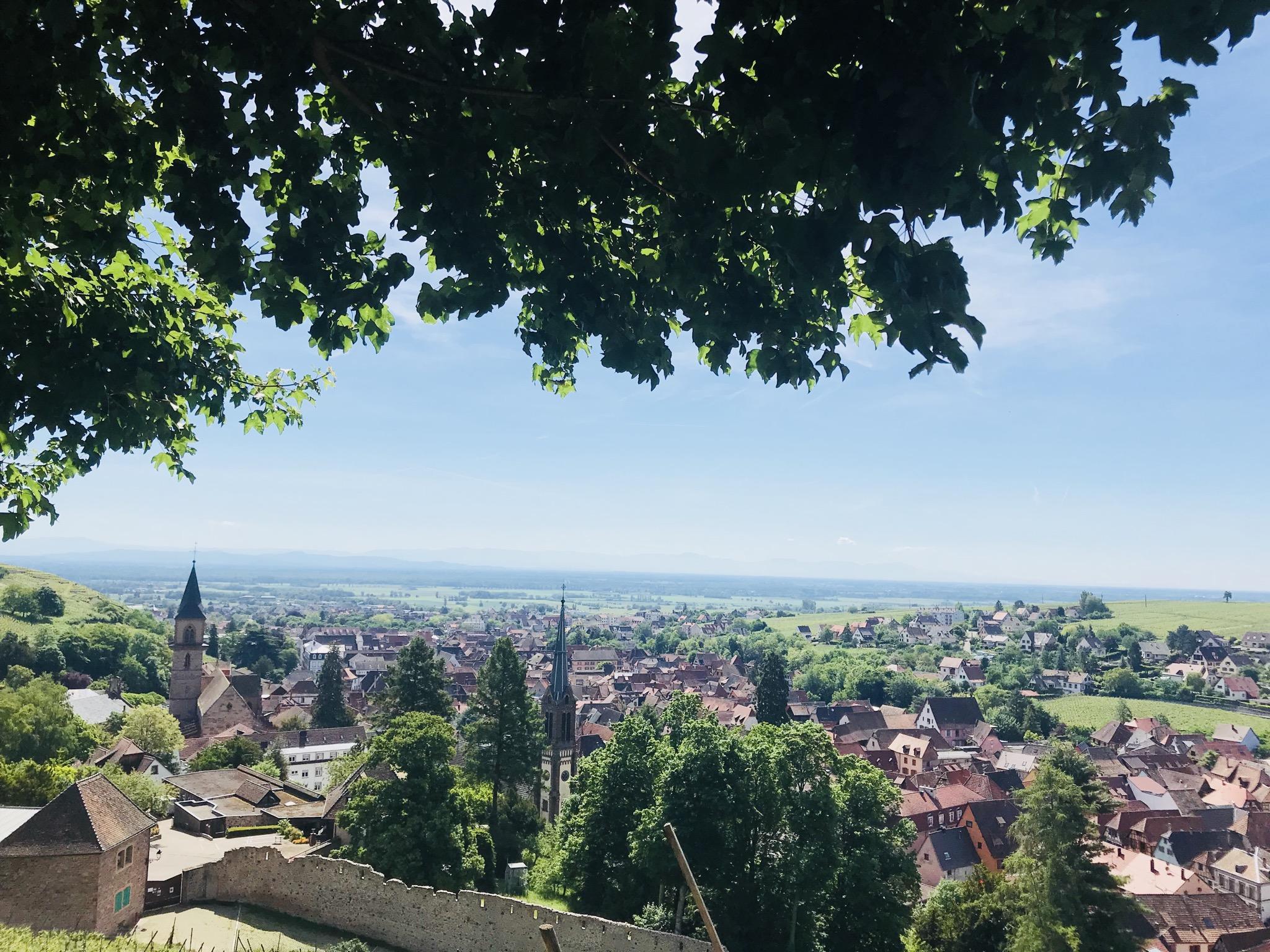 Panoramablick von Ribeauvillé