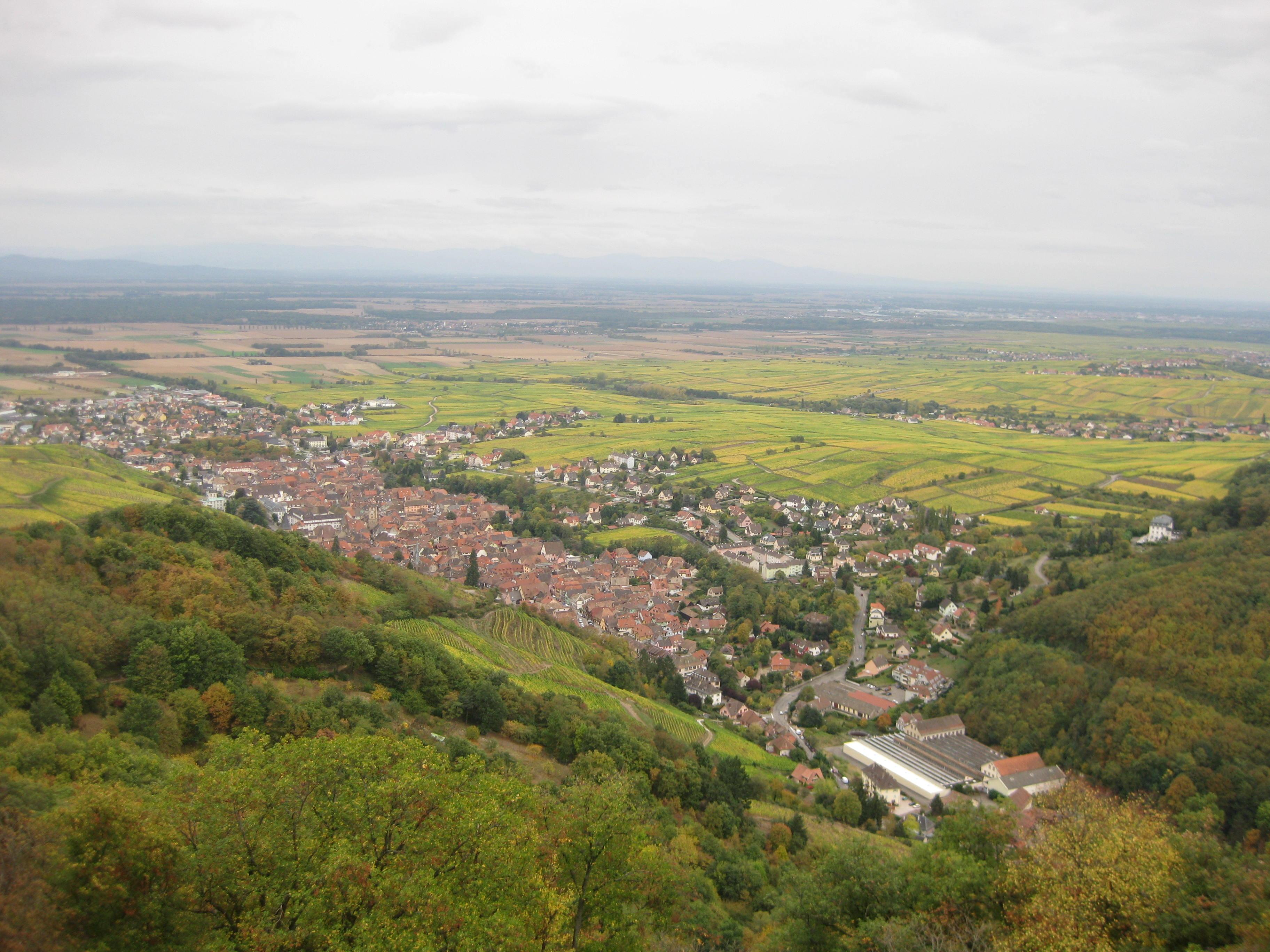 Blick von oben auf Ribeauvillé, Elsass