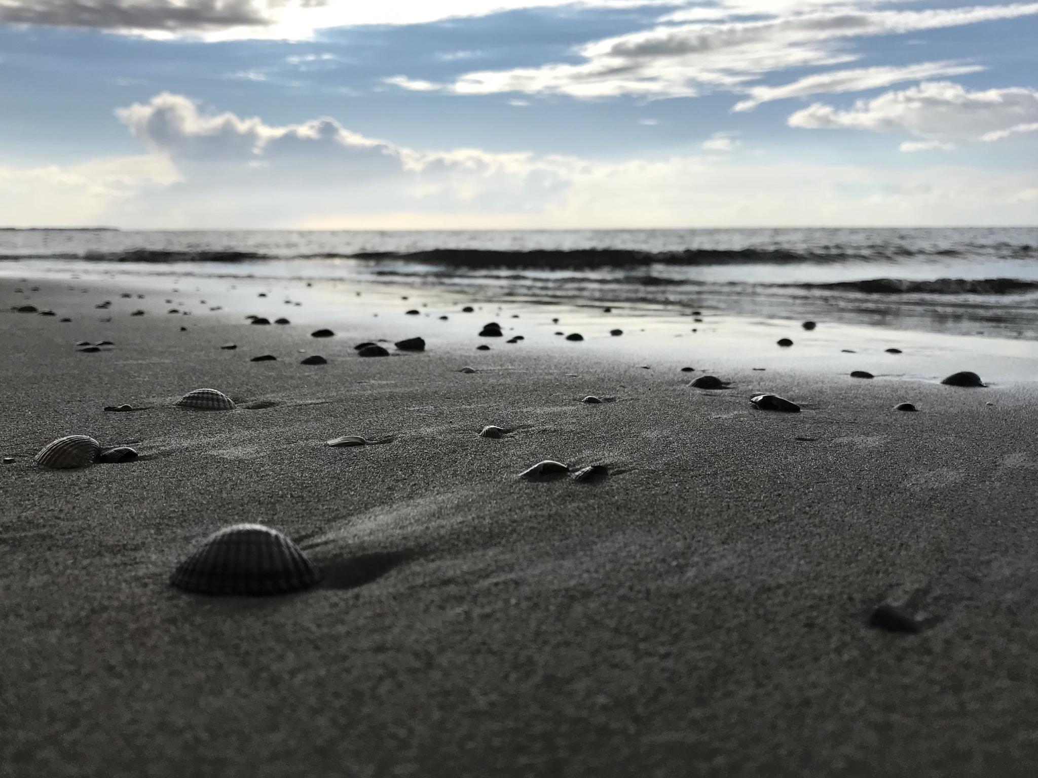 Langeoog Strandimpressionen