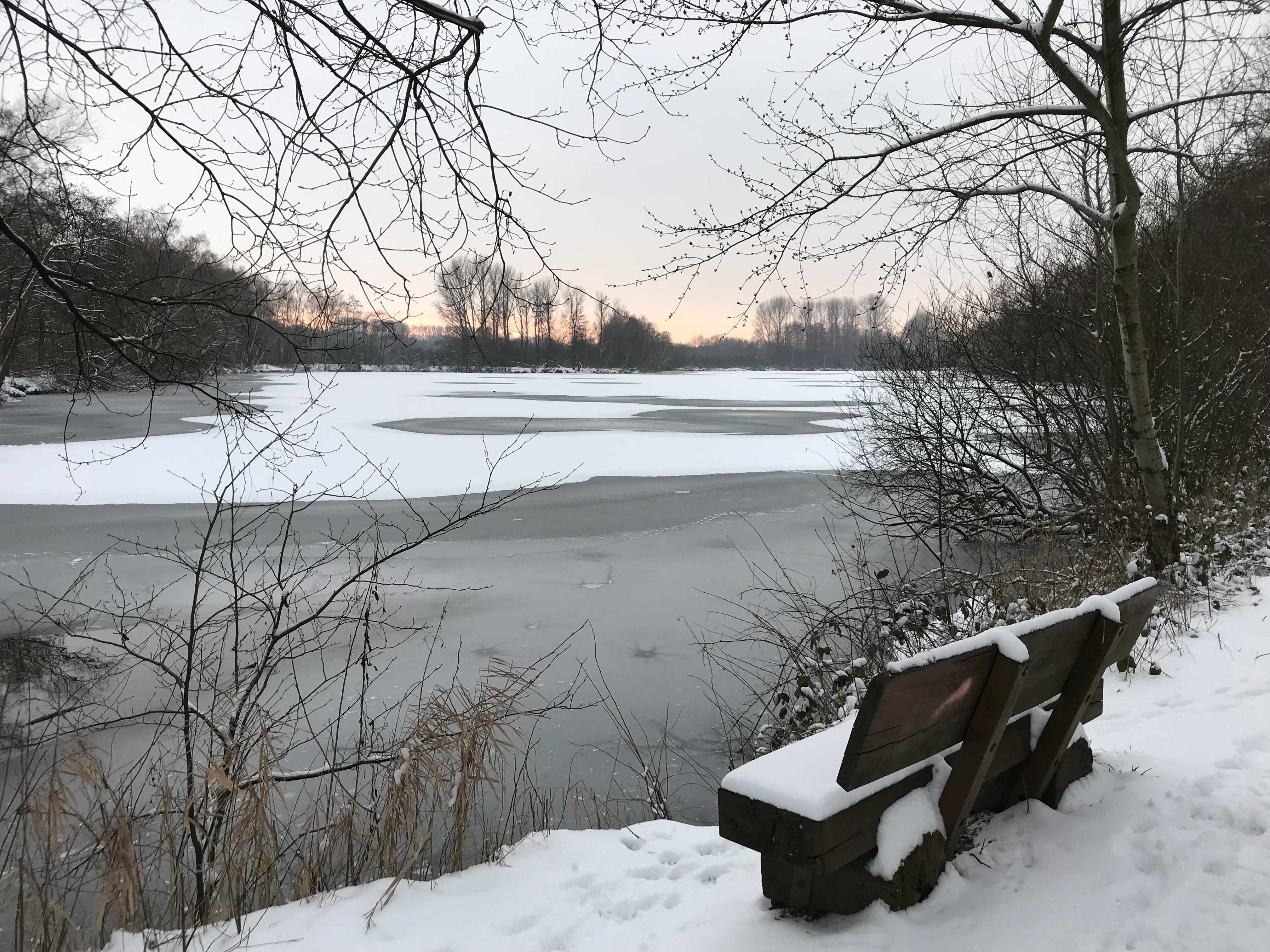 Eisiger Wintertag am Borner See, Naturpark Schwalm-Nette