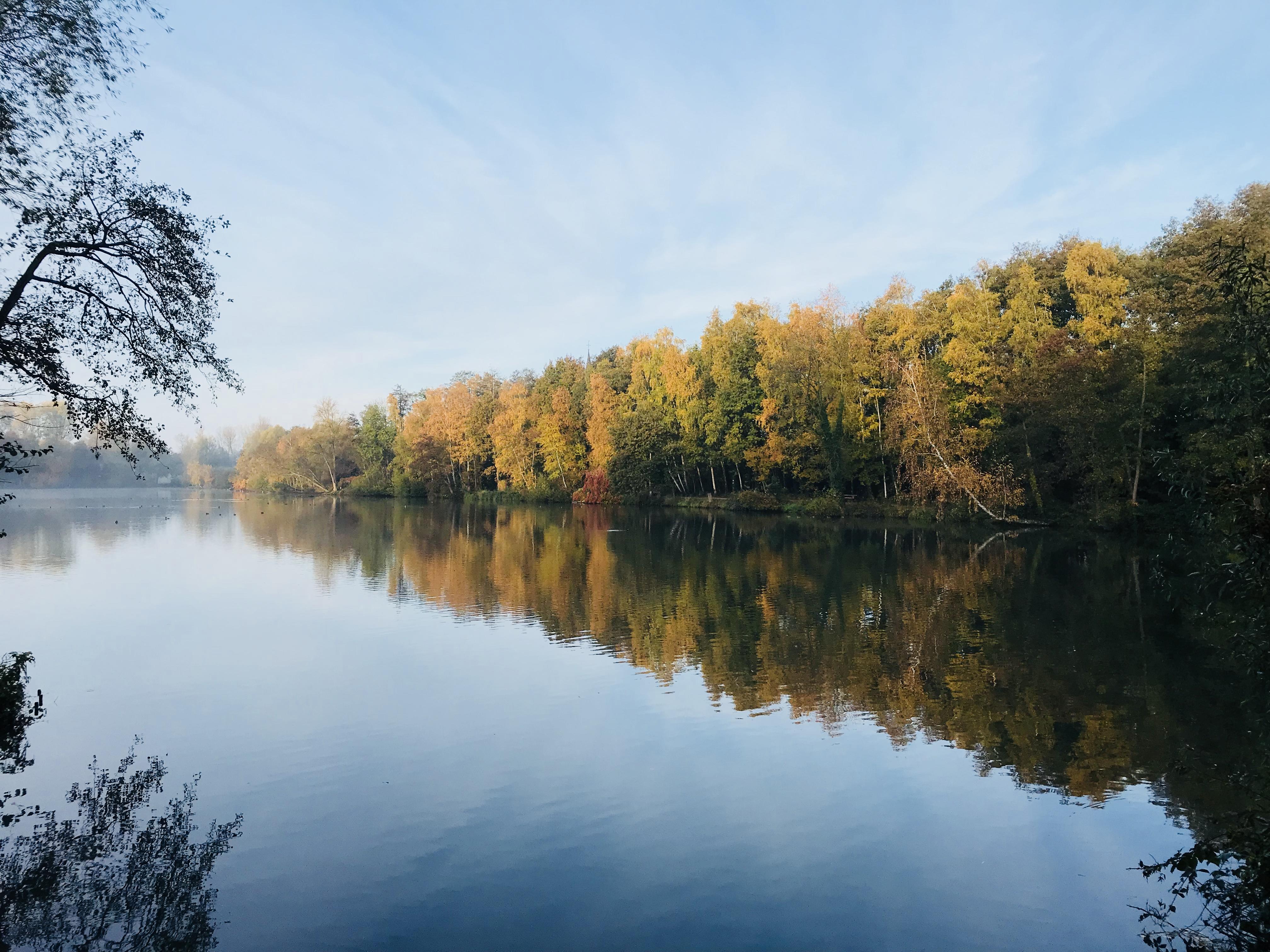 Herbstliche Morgenstimmung am Borner
