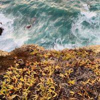 Europa Roadtrip 2019 - Wo das Meer auf Fels trifft, Algarve, Portugal