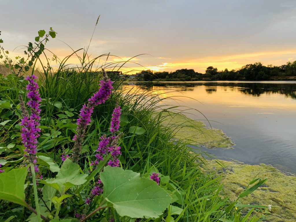 Europa Roadtrip 2019 - Sonnenuntergang an der Loire
