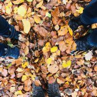 Was tun min Herbst? Tipps für Kinder