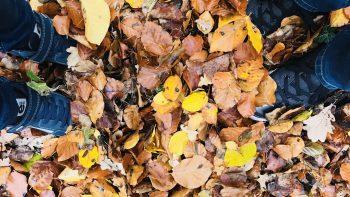 Permalink auf:25 tolle Spielideen im Herbst für Kinder