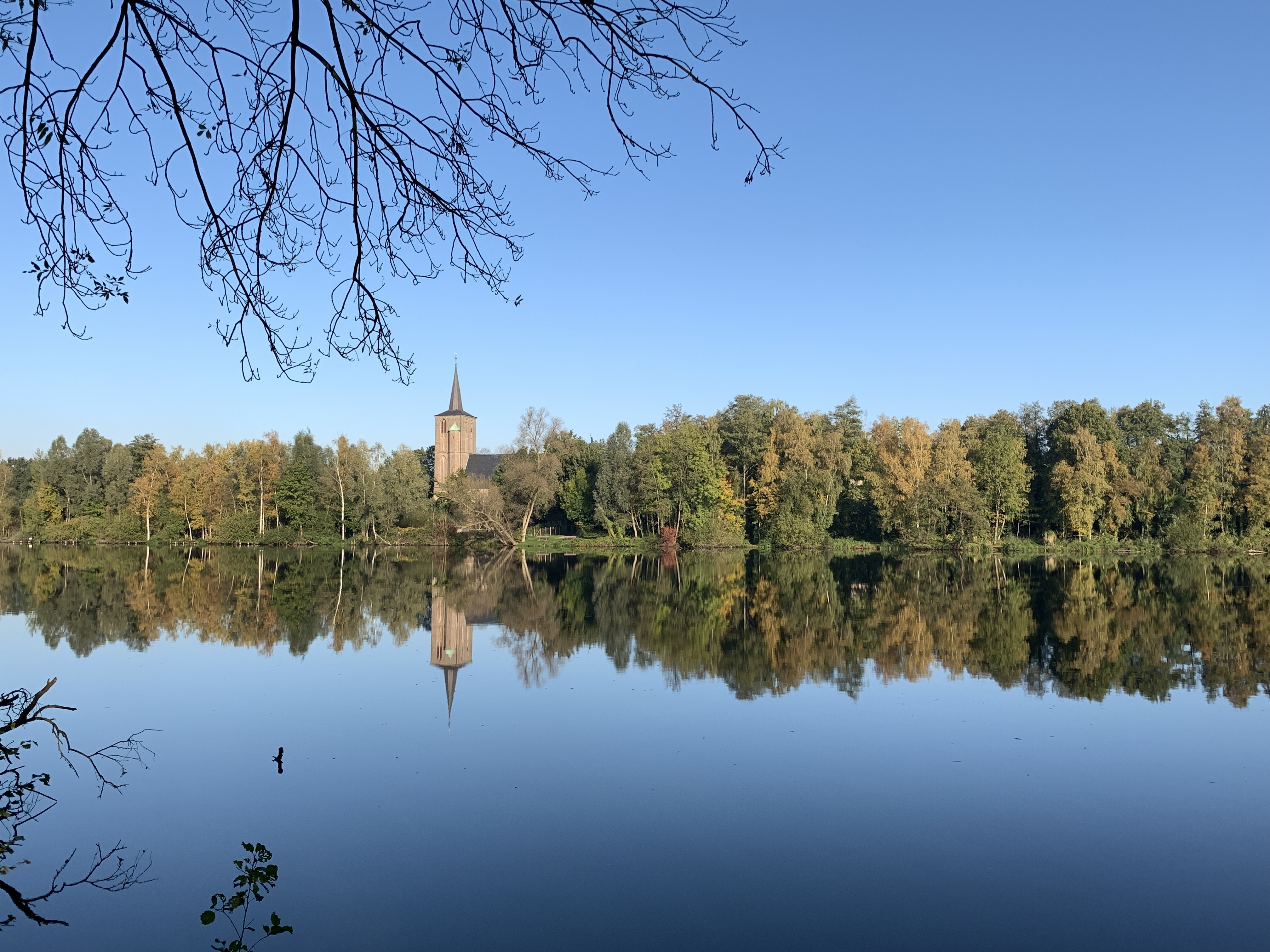 Herbstreflektionen in der Oberfläche des Borner Sees