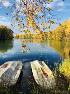 Goldener Herbst am Venekotensee