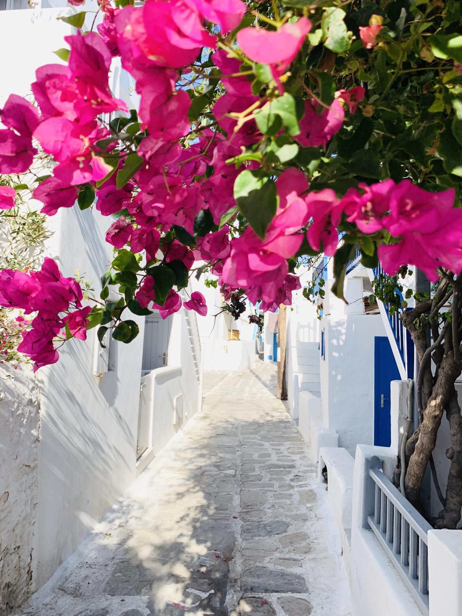 Wunderschöne Gassen durchziehen die Altstadt von Mykonos