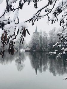 Weiße Pracht im Winter am Borner See