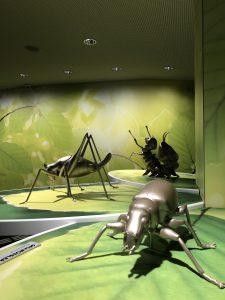 Die Wildnis(t)räume Ausstellung des Nationalpark Eifel in Forum Vogelsang IP