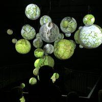 Wildnis(t)räume Ausstellung im Nationalpark Eifel Zentrum Vogelsang