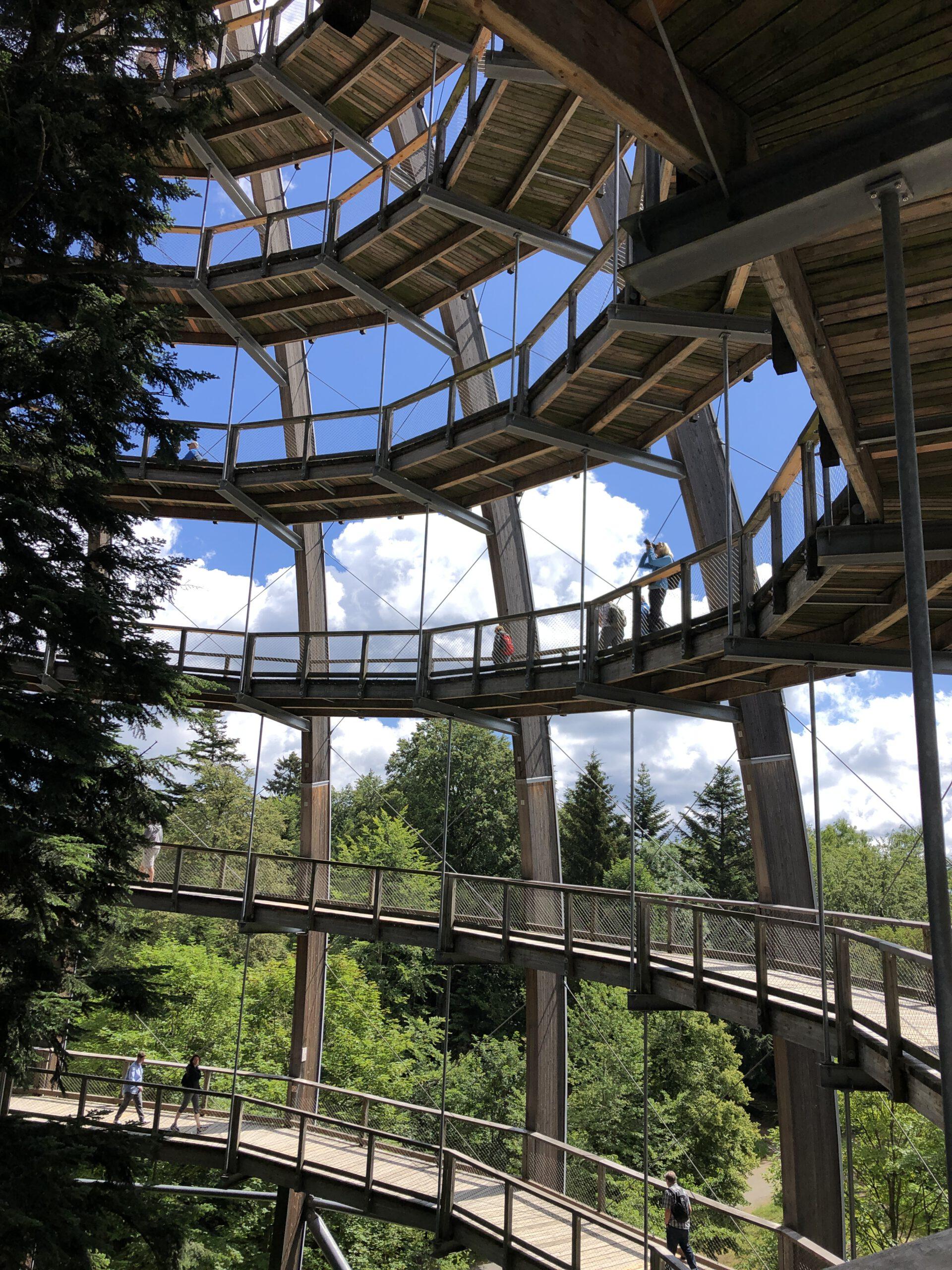 Baumwipfelpfad mit Aussichtsplattform Waldei, NPZ Lusen