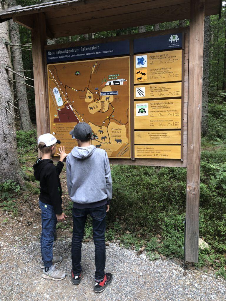 Tierpark Nationalparkzentrum Falkenstein